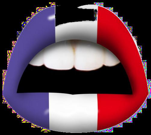 Choisis ta France!